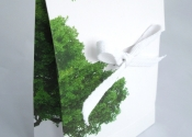 Green Envelope Bag