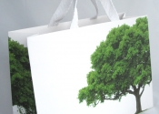 Large Eco-Friendly Retail Bag