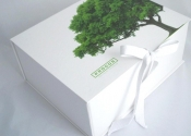 Procos Eco-Friendly Box